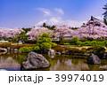 富士山 桜 大石寺の写真 39974019