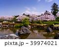 富士山 桜 大石寺の写真 39974021