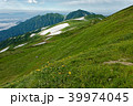ニッコウキスゲ咲く飯豊本山からみる大日岳 39974045
