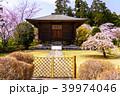 桜 大石寺 春の写真 39974046