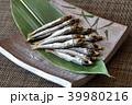 焼き魚 うるめいわし丸干し 上乾うるめいわしの写真 39980216