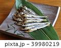 焼き魚 うるめいわし丸干し 上乾うるめいわしの写真 39980219