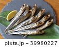 焼き魚 うるめいわし丸干し 上乾うるめいわしの写真 39980227