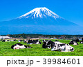 富士山 牧場 放牧の写真 39984601