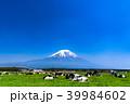 《静岡県》富士山・朝霧高原の牧場 39984602