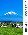 《静岡県》富士山・朝霧高原の牧場 39984603
