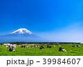 《静岡県》富士山・朝霧高原の牧場 39984607