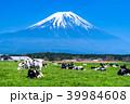 《静岡県》富士山・朝霧高原の牧場 39984608