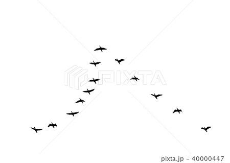 V字で飛ぶ鳥のシルエットのイラスト素材 [40000447] , PIXTA