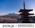 富士山 新倉山浅間公園 桜の写真 40003001