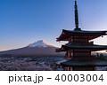 富士山 新倉山浅間公園 桜の写真 40003004