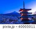 日本を象徴する風景【山梨県・新倉山浅間公園】 40003011