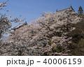 上田城 春 桜の写真 40006159