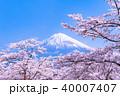富士山 桜 満開の写真 40007407