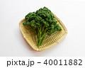 パセリ 野菜 食材の写真 40011882