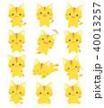 猫 喜ぶ 驚くのイラスト 40013257