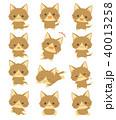 猫 喜ぶ 驚くのイラスト 40013258