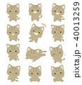 猫 喜ぶ 驚くのイラスト 40013259