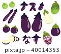 ナス 種類 野菜のイラスト 40014353