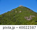 屋久島のトーフ岩 40022387