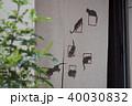 猫の暖簾 40030832