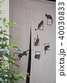 猫の暖簾 40030833