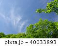 青空 新緑 雲の写真 40033893
