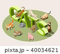 ねこ ネコ 猫のイラスト 40034621
