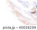 貝殻 貝片 貝パールの写真 40038299