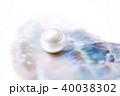 貝殻 貝片 貝パールの写真 40038302
