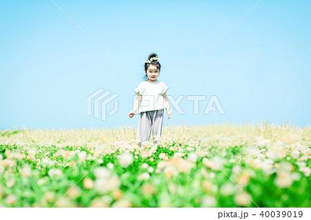 草原 ファミリーイメージ 40039019