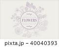 草本 フレーム 手描きのイラスト 40040393