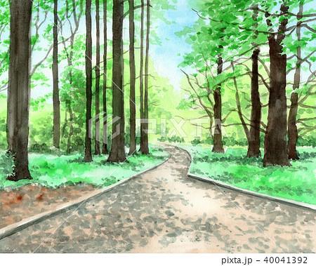 水彩で描いた新宿御苑の森 40041392