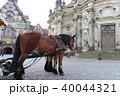 ドイツ ドレスデン ランドマークの写真 40044321