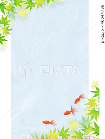 金魚 和紙_青 40044786