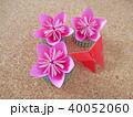 折り紙の花と蝶 40052060
