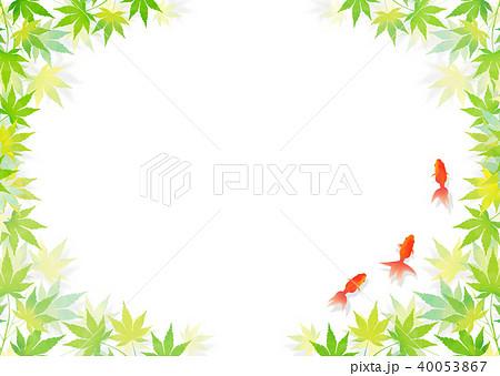 金魚 和紙 40053867