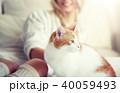 ねこ ネコ 猫の写真 40059493