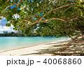 グアム ビーチ 海の写真 40068860