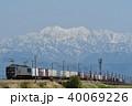 立山連峰をバックに走る貨物列車 40069226