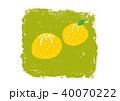 ゆず 柚子 水彩 イラスト 手描き 40070222