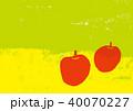 りんご 水彩画 40070227