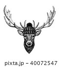 しか シカ 鹿のイラスト 40072547