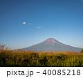 草原より望む夏富士 40085218