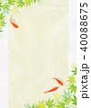 金魚 新緑 楓のイラスト 40088675