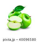 りんご アップル リンゴのイラスト 40096580
