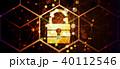 セキュリティ セキュリティー 安全のイラスト 40112546