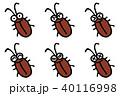ゴキブリ 害虫 虫のイラスト 40116998