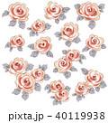 薔薇 植物 花のイラスト 40119938