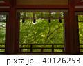 新緑の談山神社 40126253